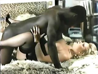 Porno Video of Retro Interracial Porn