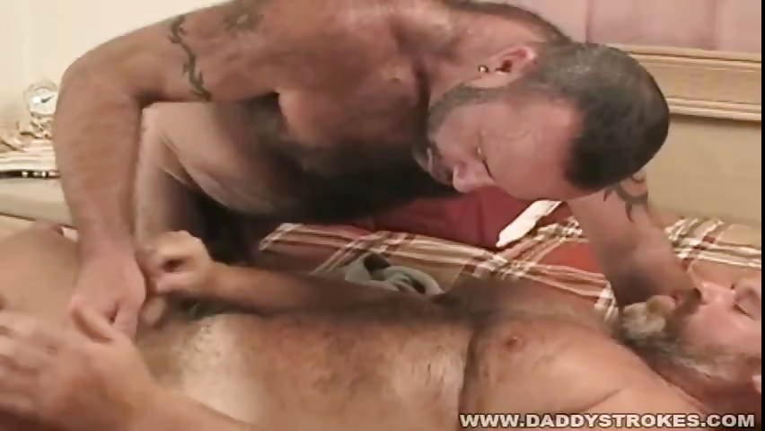Sex Movie of Quick Bear Jerk Off