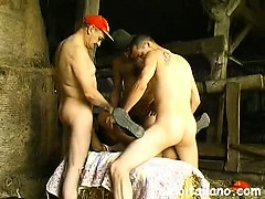 Порно извращения лижут жопу