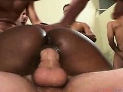Подружка оказалась трансом порно видео