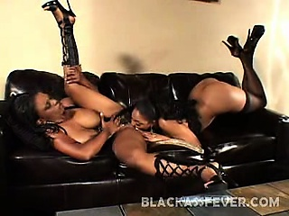 This awesome clip starts with two phat ass lesbian ebonies sitting in a couch and examining each others big boobs. Lola Lane and Cinnabunz and equally hot and horny lesbian ebonies and in this clip we have them cramming their holes with a huge dildo.