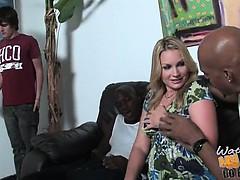 Сексуальные грудастые шалуньи видео