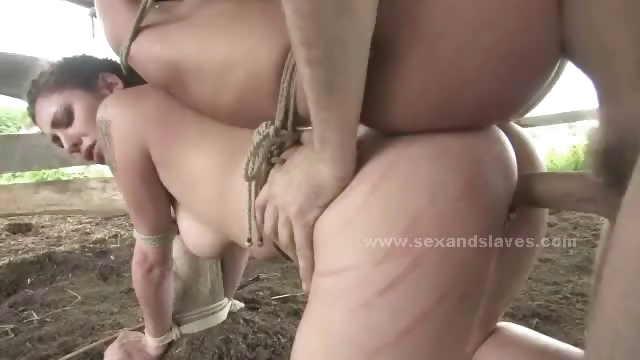 Porn Tube of Pair Of Babes Fucked In Their Mouths And Pussies After Getting Bound In Slavery Sex