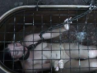 BDSM Outdoor Humiliation - Dig Slave Dig
