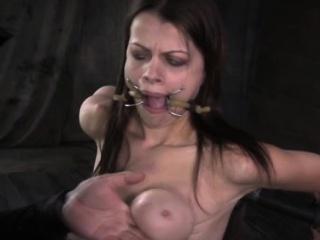 Xxx swinger videos