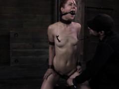 Проститутки украины в ростове