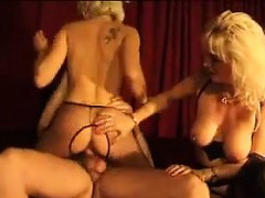 Проститутка вип латина