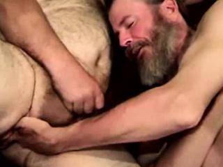 suck cock bear tube gay