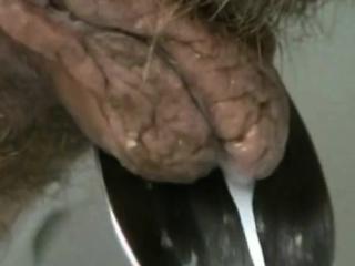 Смотреть порно оргазм со сквиртом