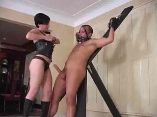 Femdom Free Sex Porn Tube Movies