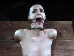 видео с секс бесплатно где на женщину сут