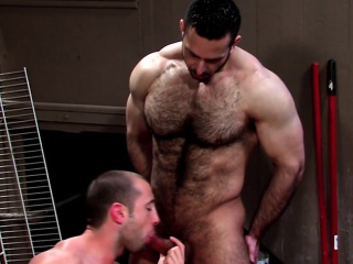 Well hung bears spunk