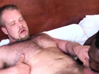 Black bear barebacked in raw trio