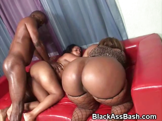 Porno Video of Black Booties Fucked And Cumshot In Threesome