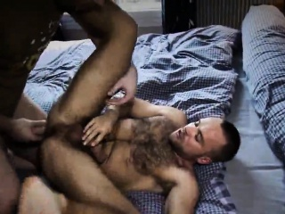 david gets filled by darko and peto coast