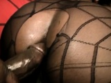 black chick in fishnets gets ass filled in doggy