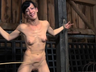 Tied up girl receives kinky gratifying for her pussy